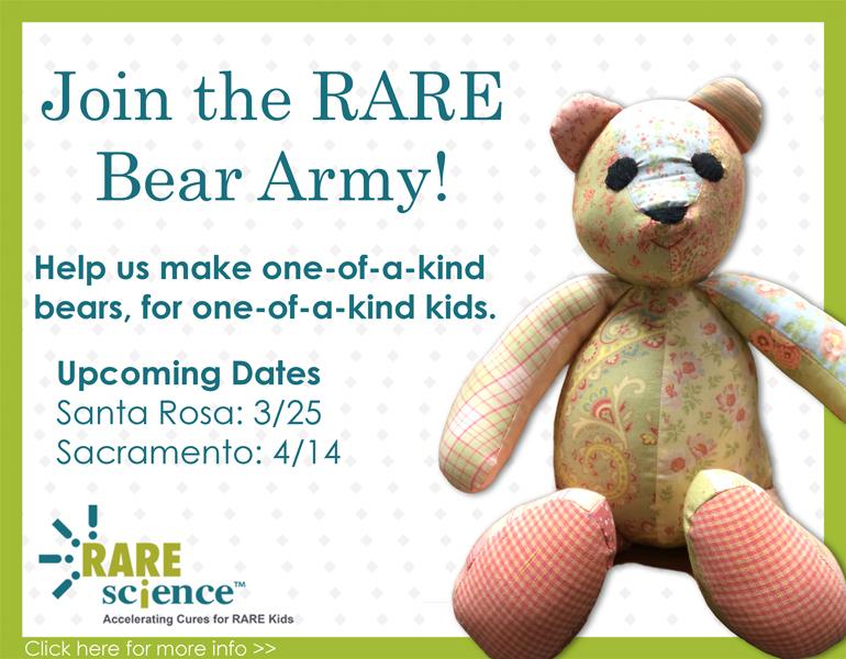 Rare Bears Workshops