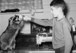 P Street mascot and family pet, Cooper, with a young Jim Meissner